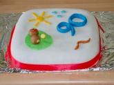 A wonderful birthday cake by Debbie